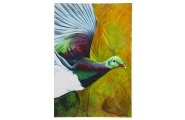The Kereru - Medium