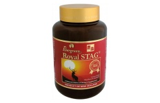Royal STAG By Evergreen