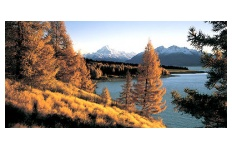 Lake Pukaki Autumn Poster